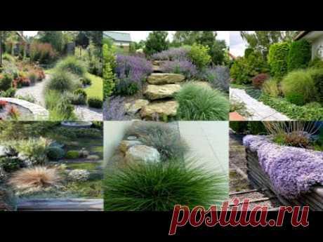 Загородный двор и участок. Идеи обустройства
