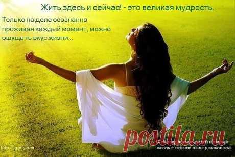 https://www.rodoswet.ru/ Жизнь в Здесь и Сейчас