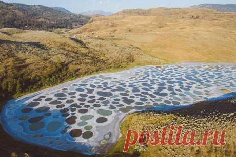 Канадское достояние: чемславится «Пятнистое озеро» Матушка-природа создала много шедевров, иозеро Клилук, однозначно, вихчисле.