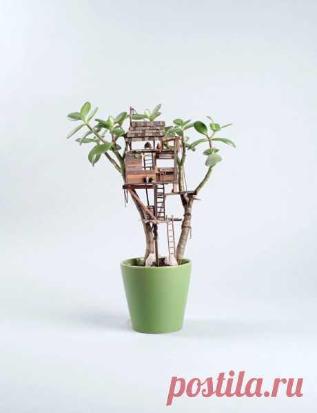 Домик на денежном дереве для привлечения финансовой удачи