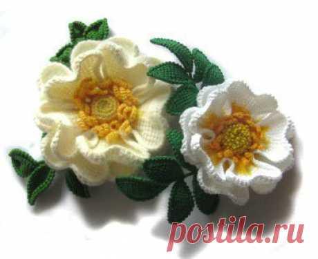 Las flores por la labor de punto de Tunicia