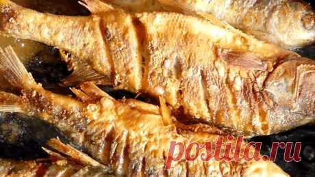 Шеф повар рассказал копеечный способ жарки любой рыбы. Получается супер вкусно   Записки старого рыболова   Яндекс Дзен