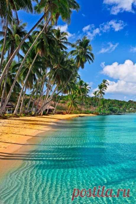 Más cerca al mar. La playa hermosa en las islas Caribeñas