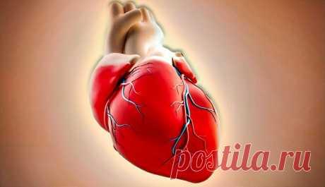 Как найти у себя сердечную недостаточность? | Из уст врача | Яндекс Дзен