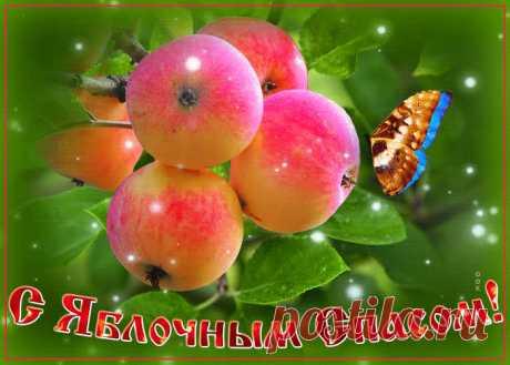 Картинки с Яблочным Спасом | ТОП Картинки