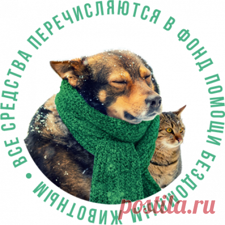 """Наверняка среди вас есть люди, которые хоть раз накормили на улице котёнка, собаку или еще как-то помогли бездомным животным. И нам очень хочется верить, что таких людей много. Тех, кто не отвернется, не пройдет мимо, а поможет. Если вы из их числа — НЕ ПРОХОДИТЕ МИМО нашей социальной акции! Алексей Маматов (врач-невролог, остеопат и фитотерапевт) запускает Онлайн-конференцию """"СУПЕРЗДОРОВЬЕ-2018"""" со сбором пожертвований в помощь приютам ДЛЯ БЕЗДОМНЫХ КОШЕК И СОБАК."""