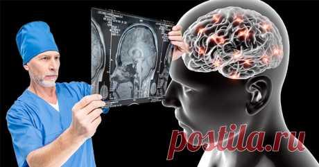 Пам'ятати все: 3 продукти для твердої пам'яті. Після 45 років особливо важливо звернути увагу Ми витрачаємо багато часу на підтримання краси й здоров'я нашого тіла, але забуваємо про найголовніший орган – наш мозок. Здоровий мозок дозволяє нам вчитися і запам'ятовувати, спілкуватися, розв'язувати проблемита приймати рішення.Будучи центром контролю нашого тіла, він відповідає за те, щоб се