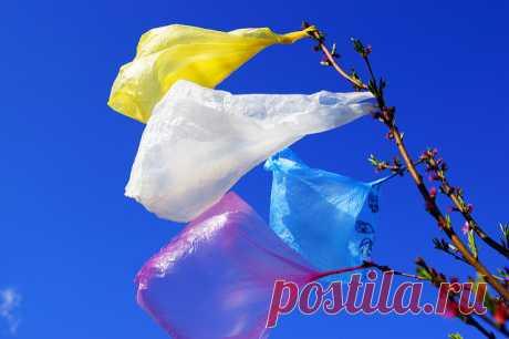 В России начнут отказывать от пластика: 3 факта Новый законопроект!