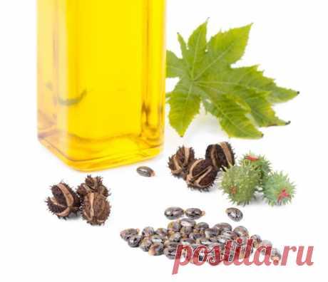 Лечение касторовым маслом / Будьте здоровы