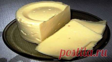 Домашний сыр «Милка» - Очень вкусно Домашний сыр «Милка» получается просто объедение. Мы дома часто чаюем с домашним сыром, а некоторые даже первые и вторые блюда едят вприкуску с сыром на ломтике хлеба. Нужно знать несколько... Read more »
