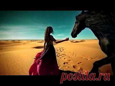 Обожаю лошадей..
