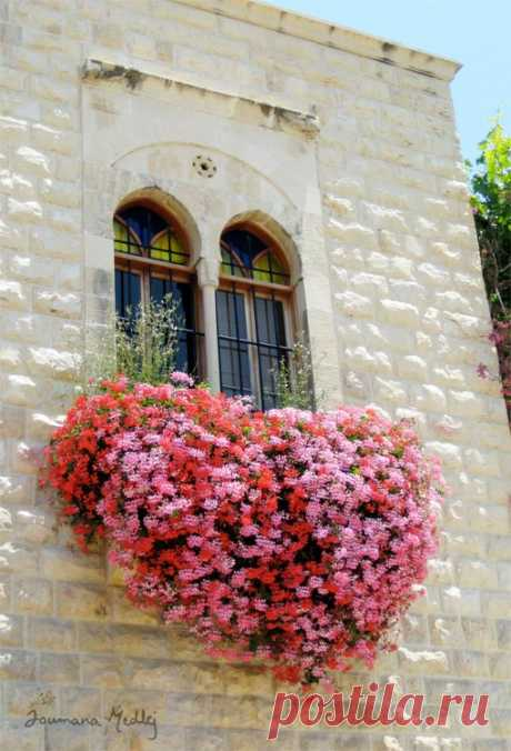 The Heart is a Bloom by Majnouna on DeviantArt