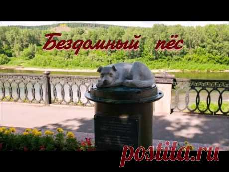 Бездомный пёс 💢 Послушайте❗ Очень трогательная песня Влада Иванова на стихи Лидии Тагановой