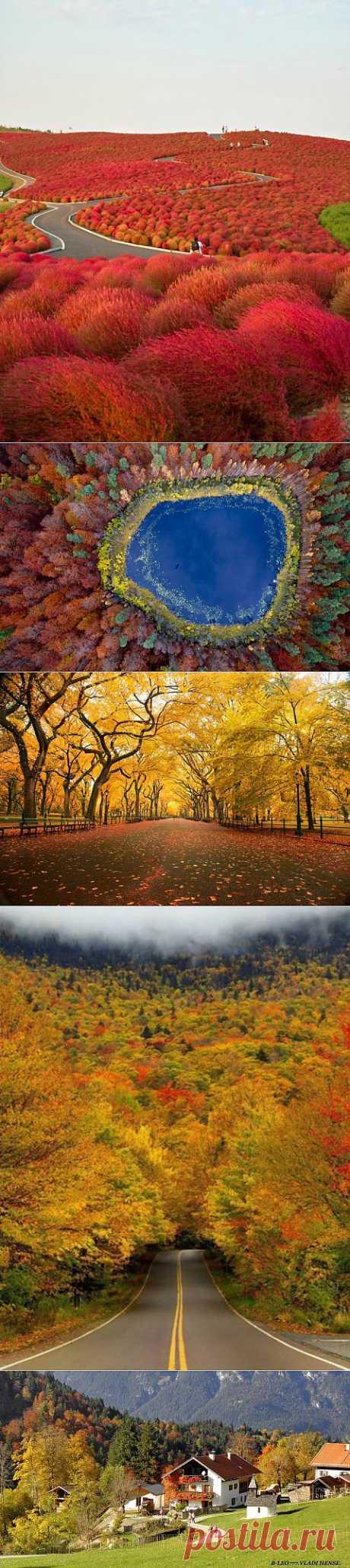 Яркие осенние фотографии.