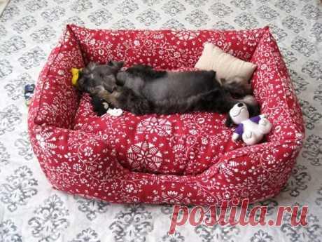 Как сшить лежанку для собаки своими руками: выкройки, пошаговая инструкция