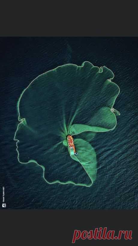 """Kant faut y aller... on Twitter: """"INSTANT MAGIQUE Quand un filet de pêche prend la forme d'un « visage humain grâce au photographe Tran Tuan Viet qui a saisi cet instant où un bateau de pêche aux anchois lâche un énorme filet dans la mer au large de la province de Phu Yen, dans le sud du Vietnam. https://t.co/9K6oRJJZZv"""" / Twitter"""