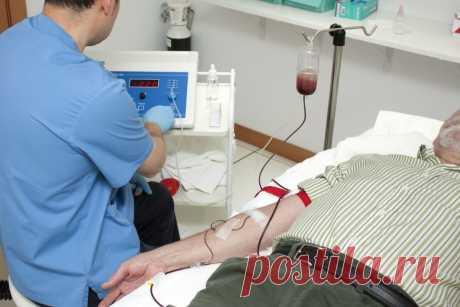 Вирусологи рассказали, у кого может быть иммунитет к коронавирусу – Wi-Fi.ru