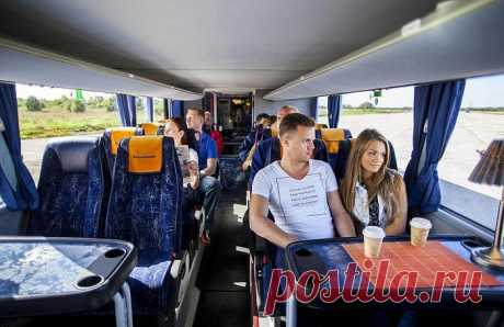 Что нужно знать о поездке на автобусах дальнего следования, чтобы не упустить свою выгоду . Чёрт побери