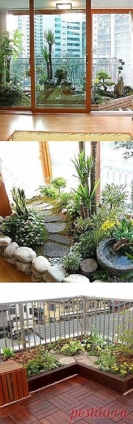 Дизайн балкона: домашний сад на балконе