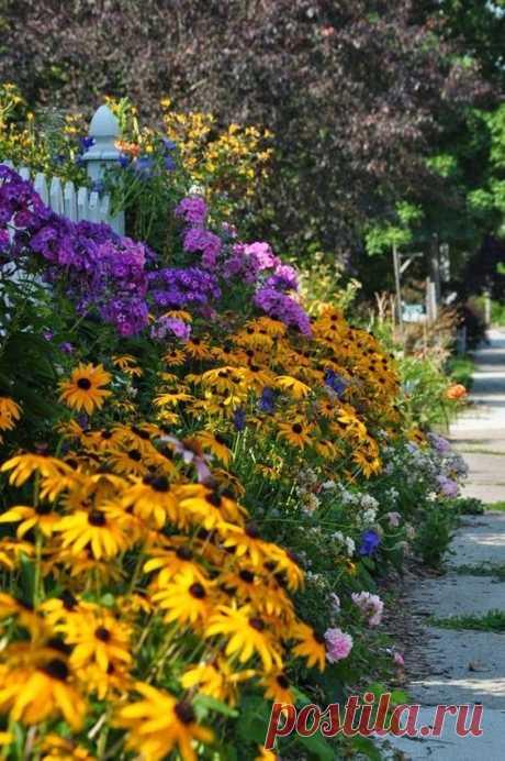 Из коллекции «Забор из цветущих цветов» Многоярусная изгородь из цветов.