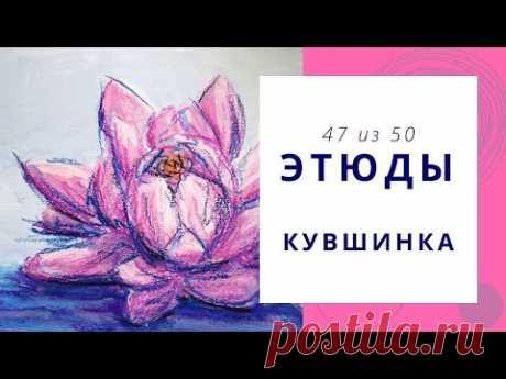 4️⃣7️⃣ КУВШИНКА (гуашь+масляная пастель). Серия «50 этюдов»
