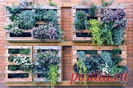 Собственный сад с красивыми цветами – мечта садоводов-романтиков, желающих, чтобы их территория была яркой и привлекательной. Но хаотичная высадка растений не всегда уместна, а если участок еще и ограничен в пространстве, необходимо продумать, как грамотно обустроить цветник. Отличным решением станут вертикальные клумбы. Изготовление таких конструкций не займет много времени, а большая вариация форм, материалов, позволяет подобрать наиболее подходящий вариант...