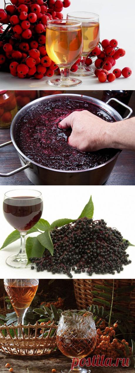 Рябиновое вино, приготовленное самостоятельно. Несложные рецепты из красной и черной рябины | Про самогон и другие напитки 🍹 | Яндекс Дзен