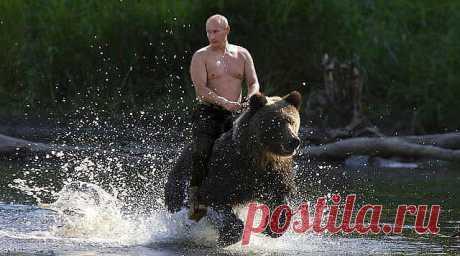 Не будите русского медведя! (Константин Фролов-Крымский) / Стихи.ру