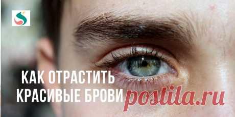 Простые советы по уходу за бровями ~ SLOVESA - журнал о развитии