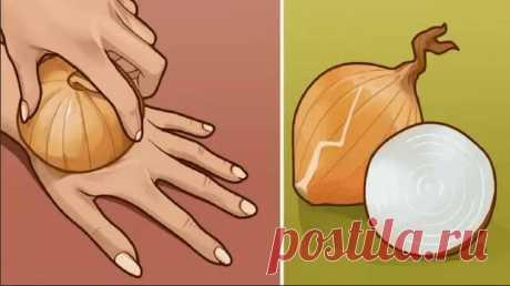Сырой лук — источник молодости и сильнейший регенератор клеток! Берем самую обычную луковицу… — Бабушкины секреты