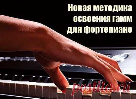 Нотный магазин MusBooks.ru - ноты, книги по искусству — Фонотека сайта — Наша любимая музыка