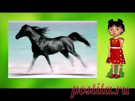 100 тысяч почему Почему лошади фыркают? - YouTube