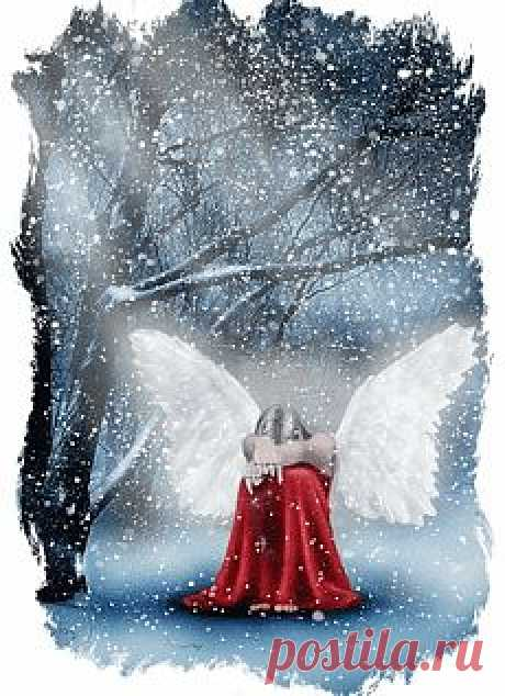 Do not forget about darlings... Angel - Angels - Photo albums - Angel Moy
