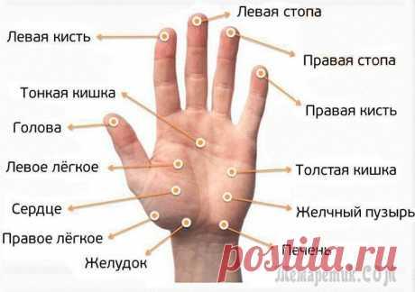 Массаж пальцев рук для снятия боли: точки и техника выполнения