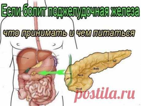 ✔ ПОЛЕЗНЫЕ СОВЕТЫ :  Сохраните, чтобы не потерять. СОВЕТ 1 : ЛЕЧЕНИЕ ПОДЖЕЛУДОЧНОЙ ЖЕЛЕЗЫ НАРОДНЫМИ МЕТОДАМИ  То, чего не расскажет ни один врач! Поджелудочная железа — один из важных внутренних органов  человеческого тела, который отвечает за наше пищеварение. Сбой в работе поджелудочной чреват осложнениями и целым рядом заболеваний, таких как панкреатит или сахарный диабет. К счастью, есть прекрасные народные средства, которые помогают лечить этот орган не хуже лекарств. Если у тебя есть про