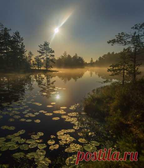Полнолуние на озере. Север Ленинградской области. Автор фото – Федор Лашков: nat-geo.ru/photo/user/27510/