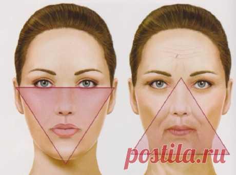 Треугольник МОЛОДОСТИ вашего лица: Делайте это и будете выглядеть на 20 лет моложе! — ДОМАШНИЕ