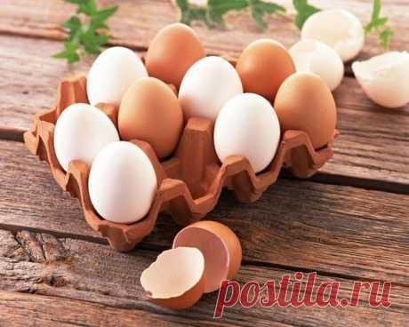 Чем полезны различные виды яиц?