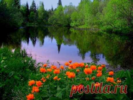 Профиль пользователя ol10ga (Ольга)