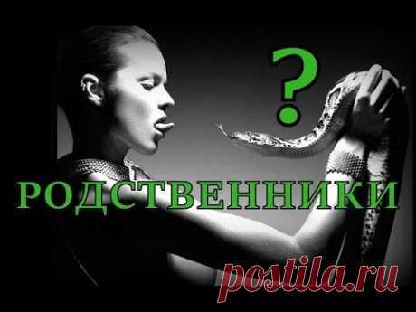 Неужели это правда!? Связь между людьми и змеем в библии