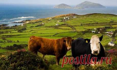 Ирландия: достопримечательности в ТОП-10