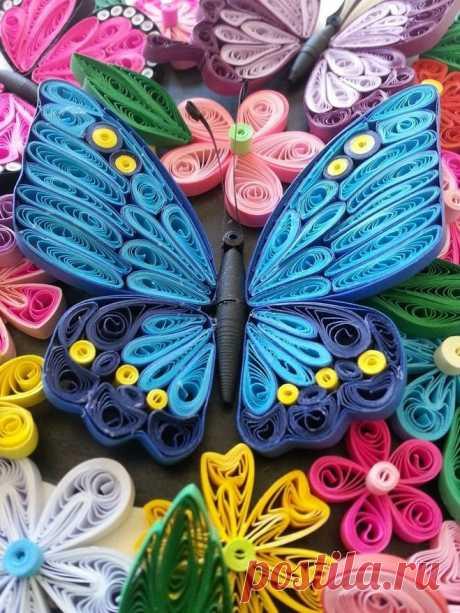 «Бабочка в цветах» — карточка пользователя bucziak в Яндекс.Коллекциях