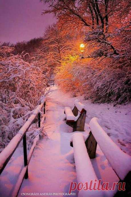 Волшебный зимний вечер