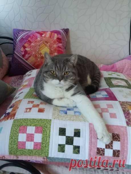 Лоскутные подушки (результат розыгрыша) | Пикабу