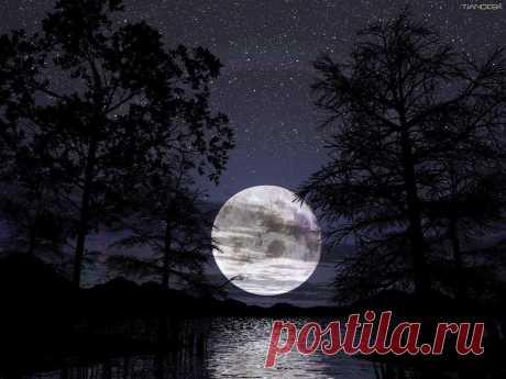 15 апреля - полное лунное затмение. В дни перед затмением и во время его – будет происходить ломка стереотипов, привычных условий жизни. Любое событие в эти дни спокойно вдруг выбить из колеи, нарушить душевный покой, спутать мысли и планы.