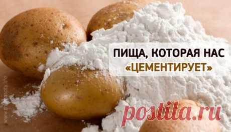 Пища, которая ЦЕМЕНТИРУЕТ нас изнутри! | Golbis