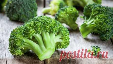 Как выглядят разные сорта капусты брокколи
