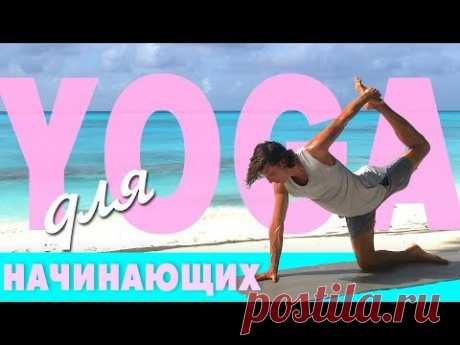 Йога для начинающих ✨🙏✨