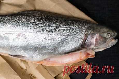 Не хуже семги, но гораздо дешевле. Как правильно приготовить горбушу Как выбирать и готовить недорогую красную рыбу — горбушу, рассказывает профессионал.