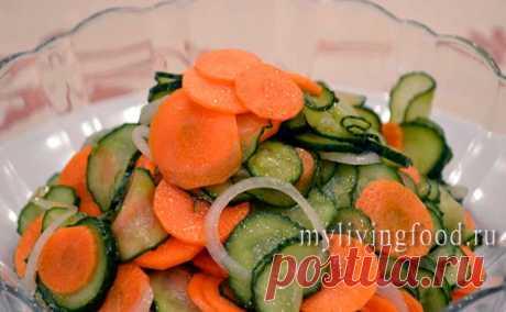 Салат из огурцов и моркови - Моя живая еда Вкусные, полезные и красивые блюда живой кухни
